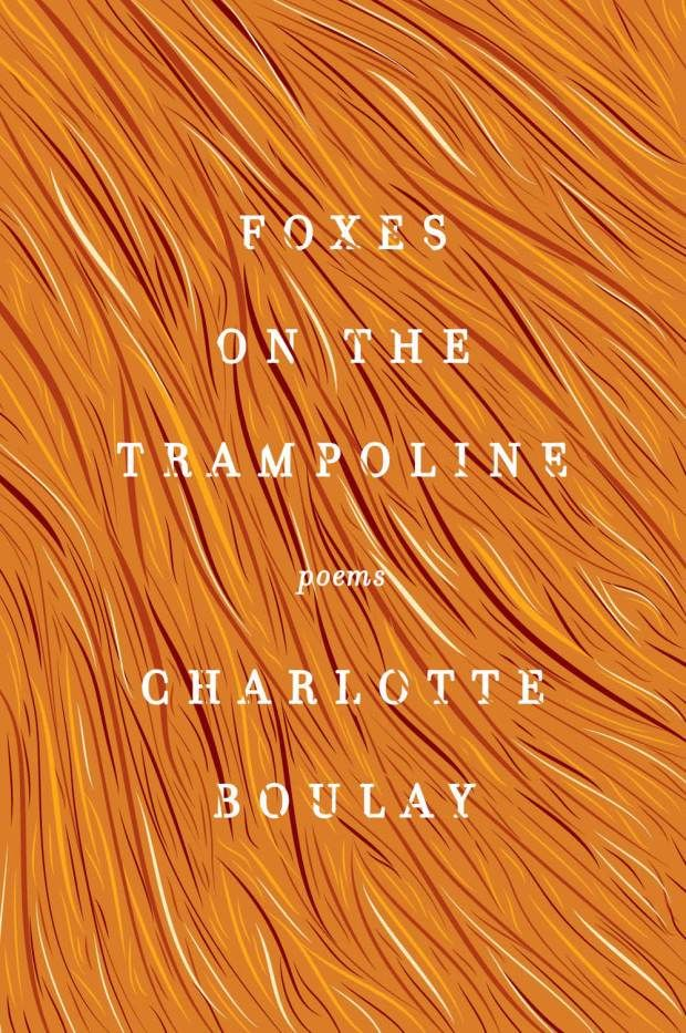 Foxes on the Trampoline by Charlotte Boulay; design Steve Attardo (HarperCollins April 2014)