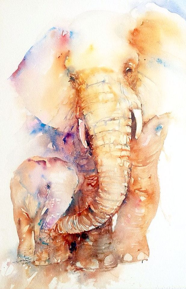 Elephant Watercolour Watercolor Elephant Watercolor Painting