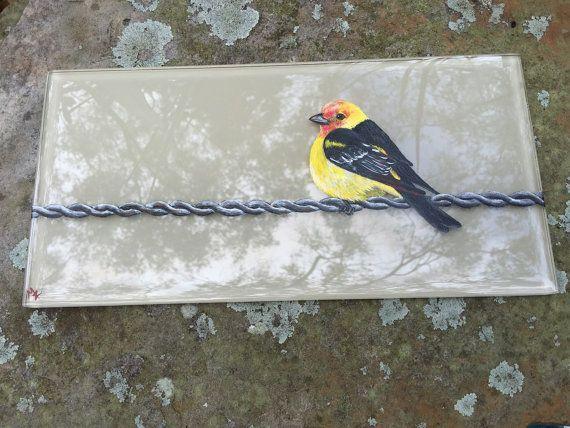 Oiseau sur un fil de fer