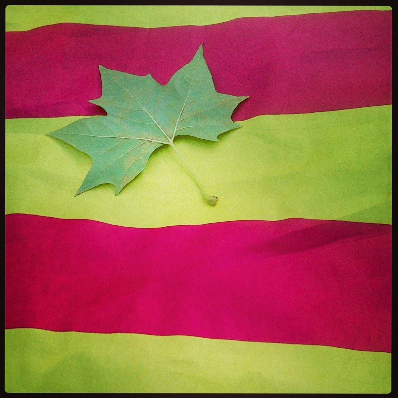 11 de setember, Diada de Catalunya