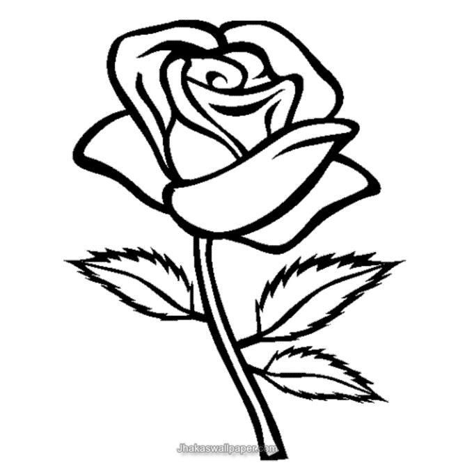 Rose Coloring Page Free Online Printable Coloring Pages, Sheets For Kids.  Get The Latest Free Rose Coloring Page Images, Favorite Coloring Pages To  Print ...