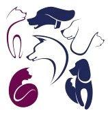 chien dressage : les chats et les chiens, la collecte de symboles animaux