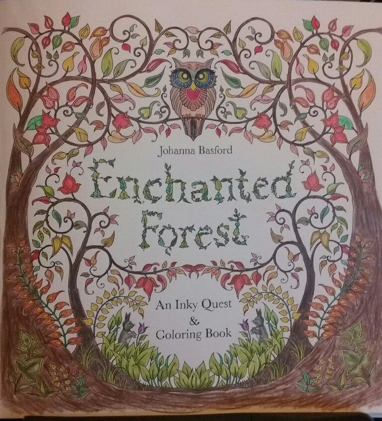 Johanna Basford Enchanted Forest Used Barnes And Nobles Watercolor Coloring Pencils Colored By S Field