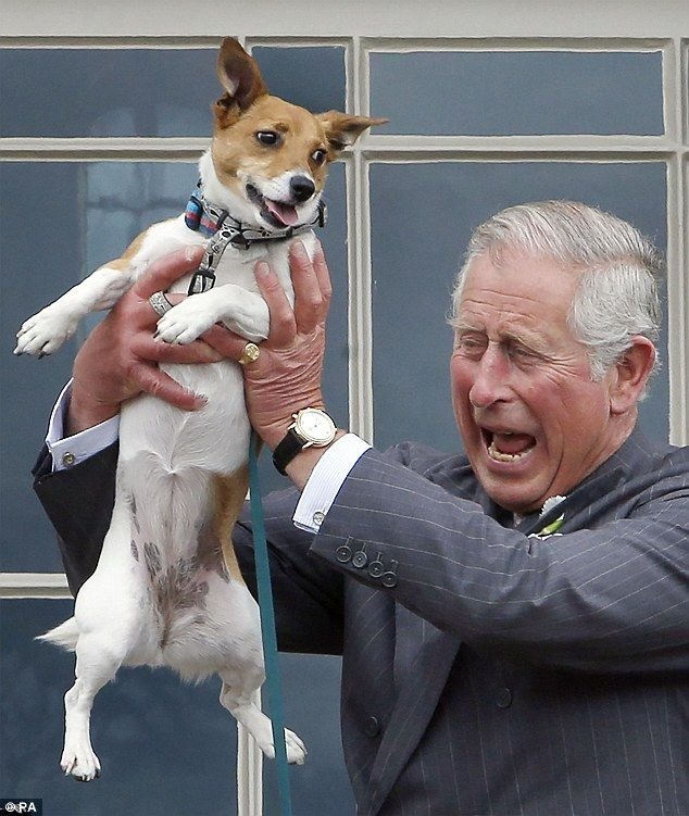 Like A Dog With A Bone Prince Charles Plays With Camilla S Pooch
