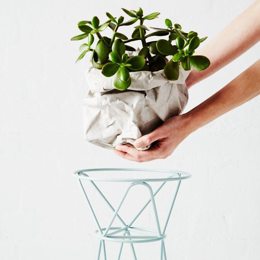 übertöpfe Für Zimmerpflanzen übertopf aus papier zimmerpflanzen übertöpfe