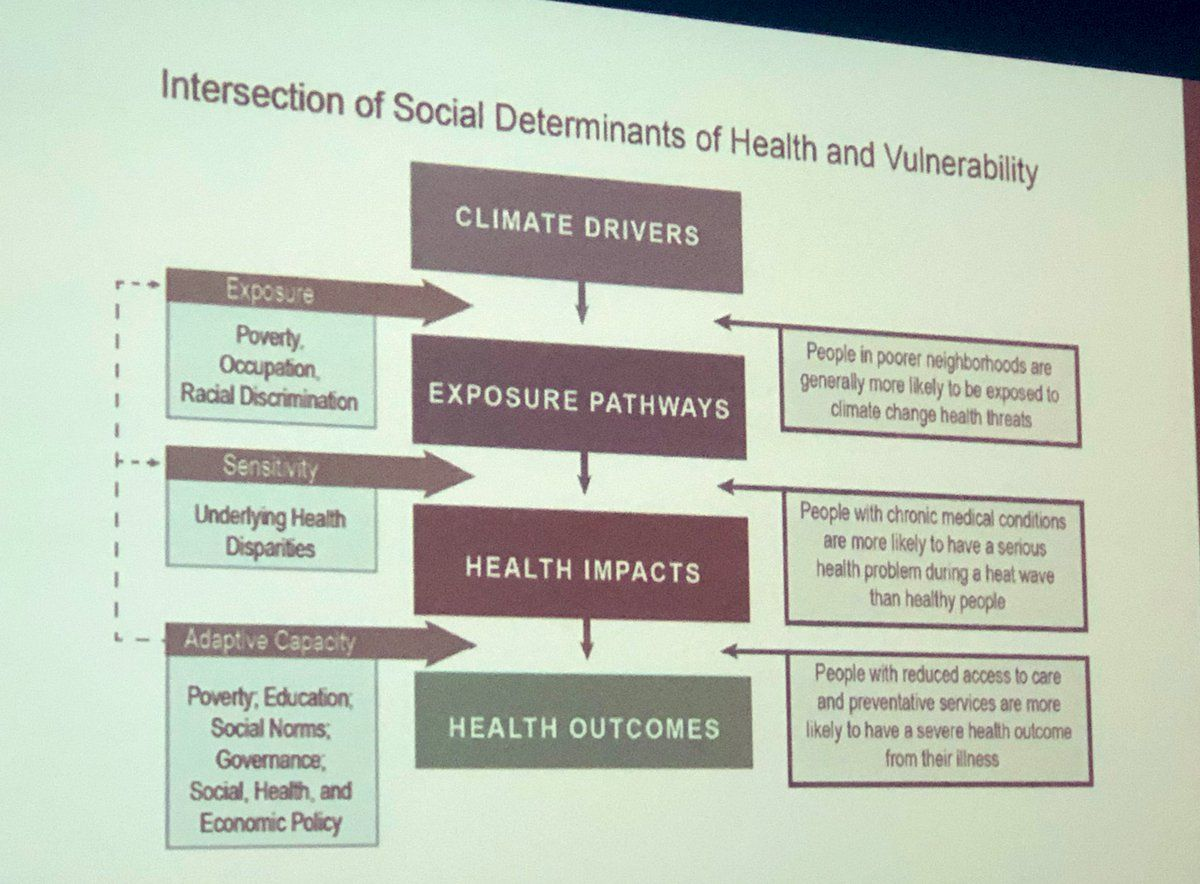 Jennifer Sellers on Social determinants of health