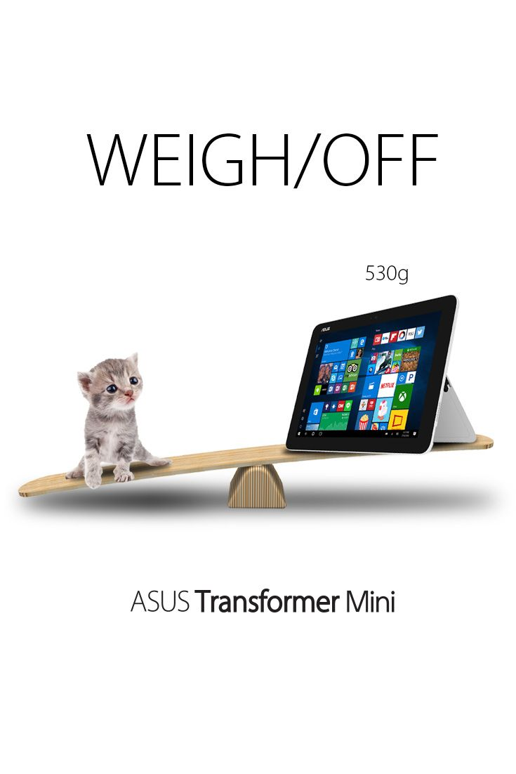 Which One Do You Think Weighs Less A 6 Weeks Old Kitten Or The Asus Transformer Mini 2 In 1 Laptop