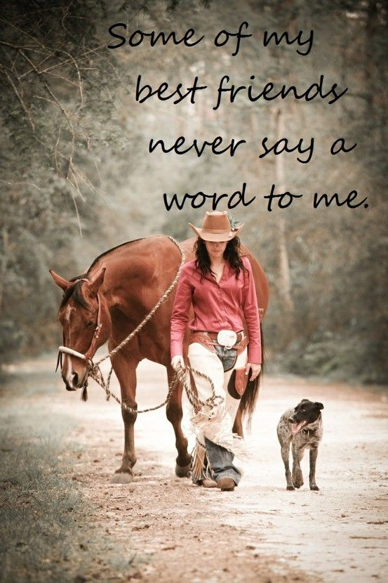 Some Of My Best Friends Never Say A Word To Me A Girl Her Horse Amazing Quotes About A Girl And Her Dog