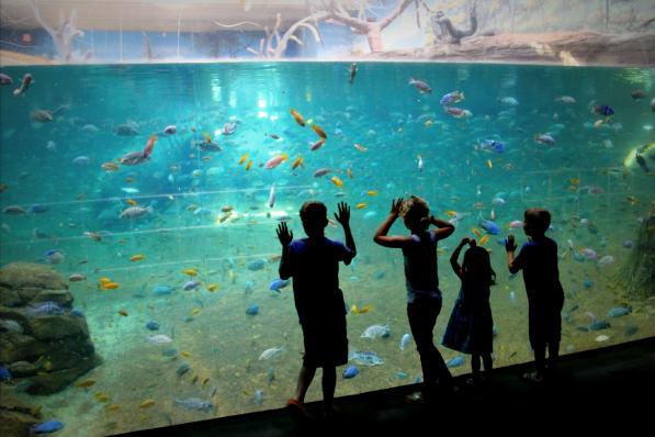2014 Best of NJ Attractions & Recreation, Zoos/Aquariums ...