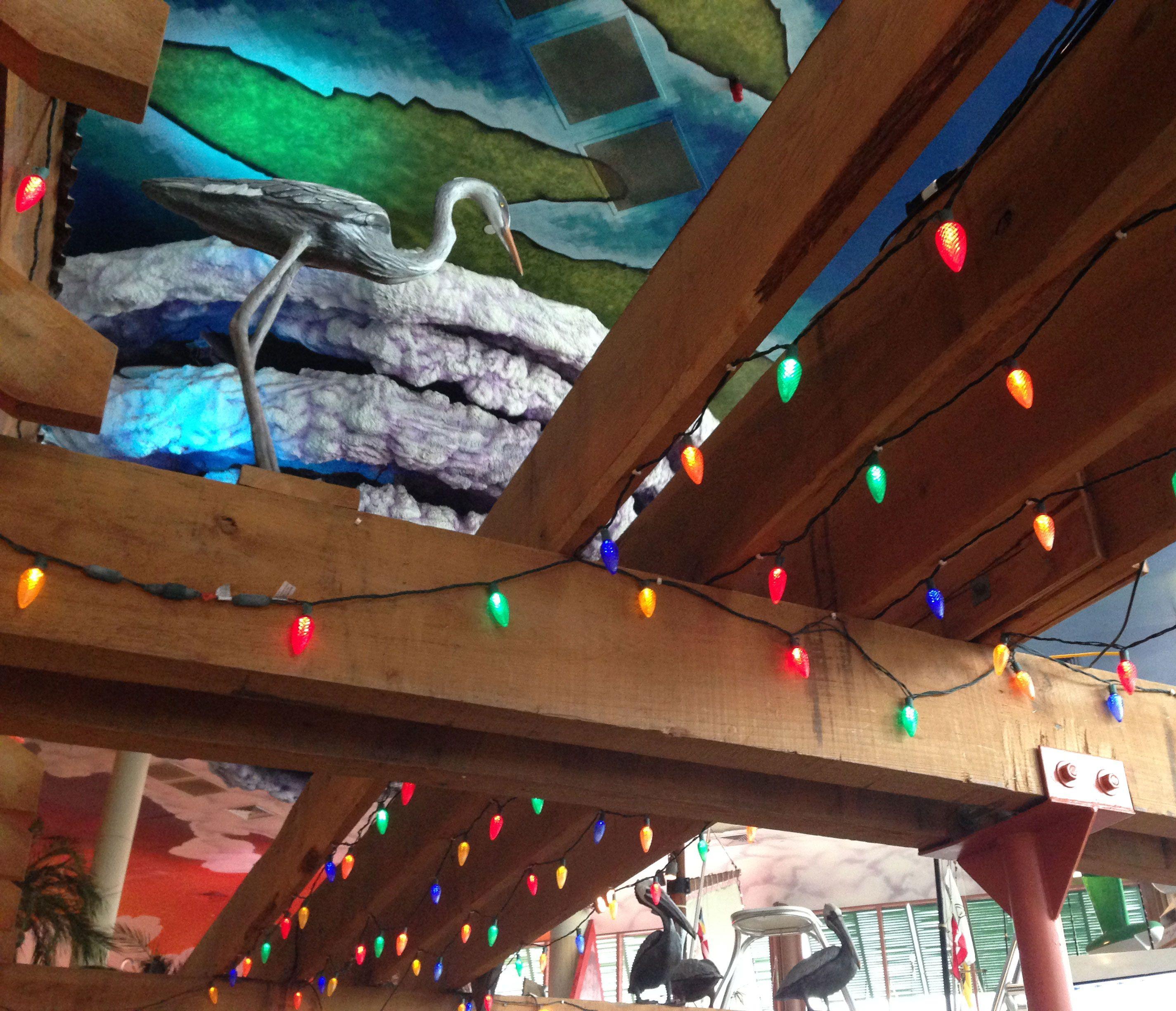 Fun Patio Lights C9 multicolor commercial led christmas string lights led christmas c9 multicolor commercial led christmas string lights workwithnaturefo