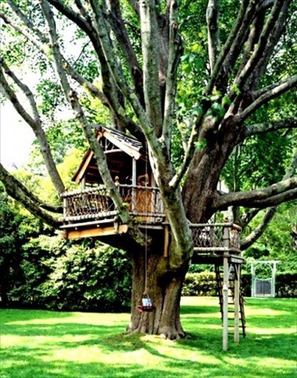 easy kids tree houses. Exellent Houses 33 Simple And Modern Kids Tree House Designs For Easy Houses