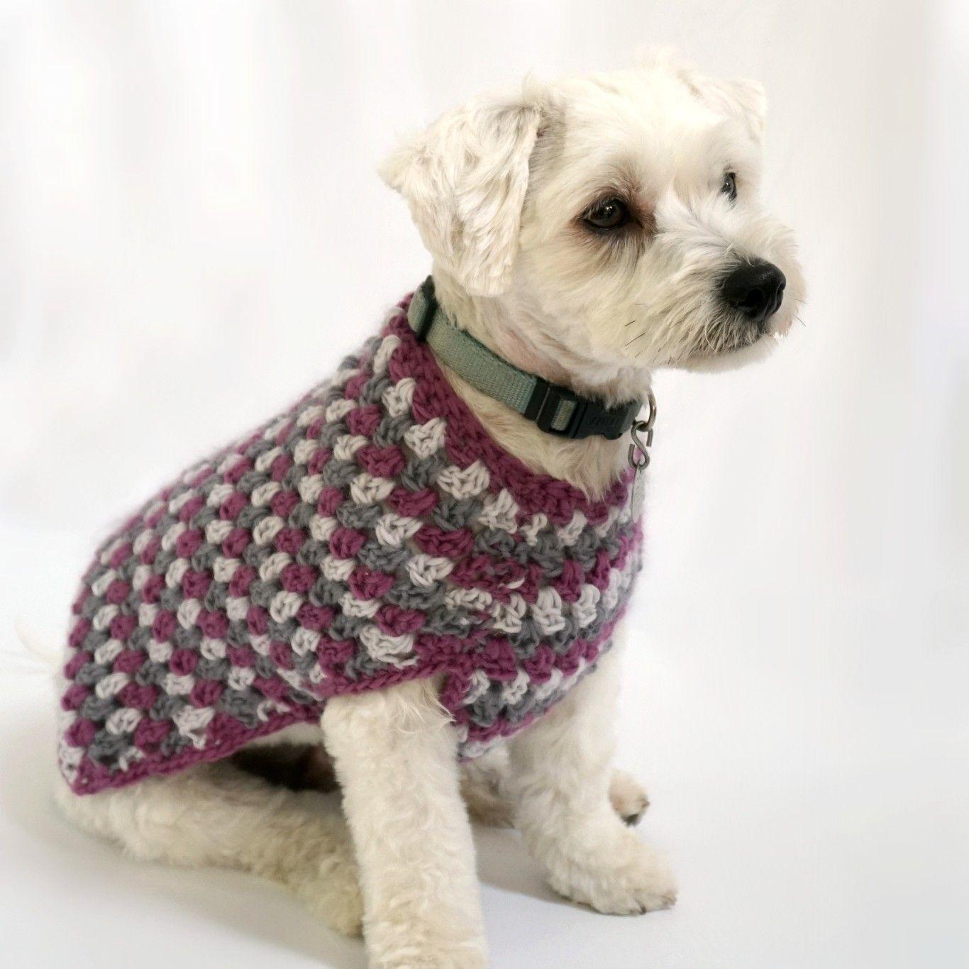 Crochet Kit - Well Dressed Dog Coat | Doggie | Pinterest | Croché ...