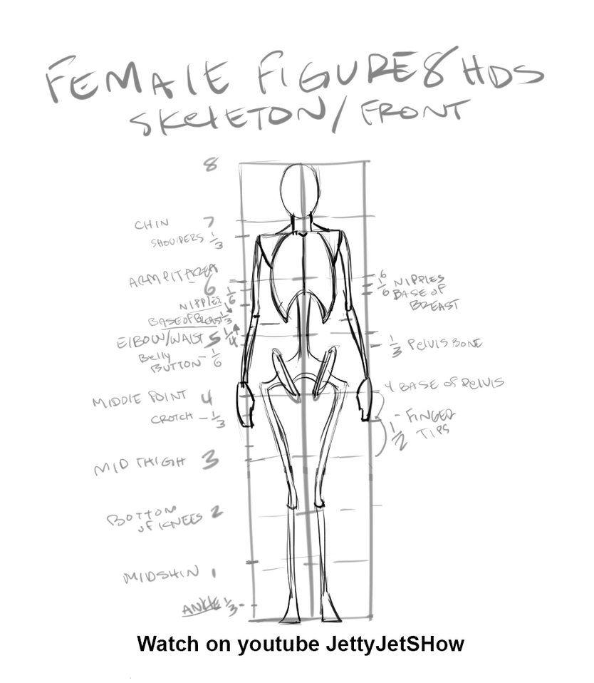 Beginner Figure Drawing/Female 8 heads by JetEffects