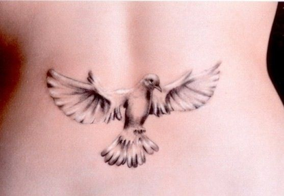 3dtattoo 3d tattoo dove 3d dove tattoo skin pinterest dove white dove lower back tattoo sexy dove tattoo white ink tattoo tattoosdesigns get your free cool tattoos voltagebd Images