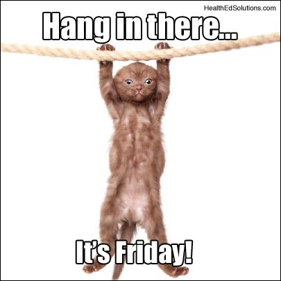 funny s | Friday Funny: Hang in there, it's Friday!
