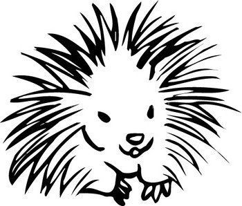 simple porcupine drawing porcupine tattoo hair make up other
