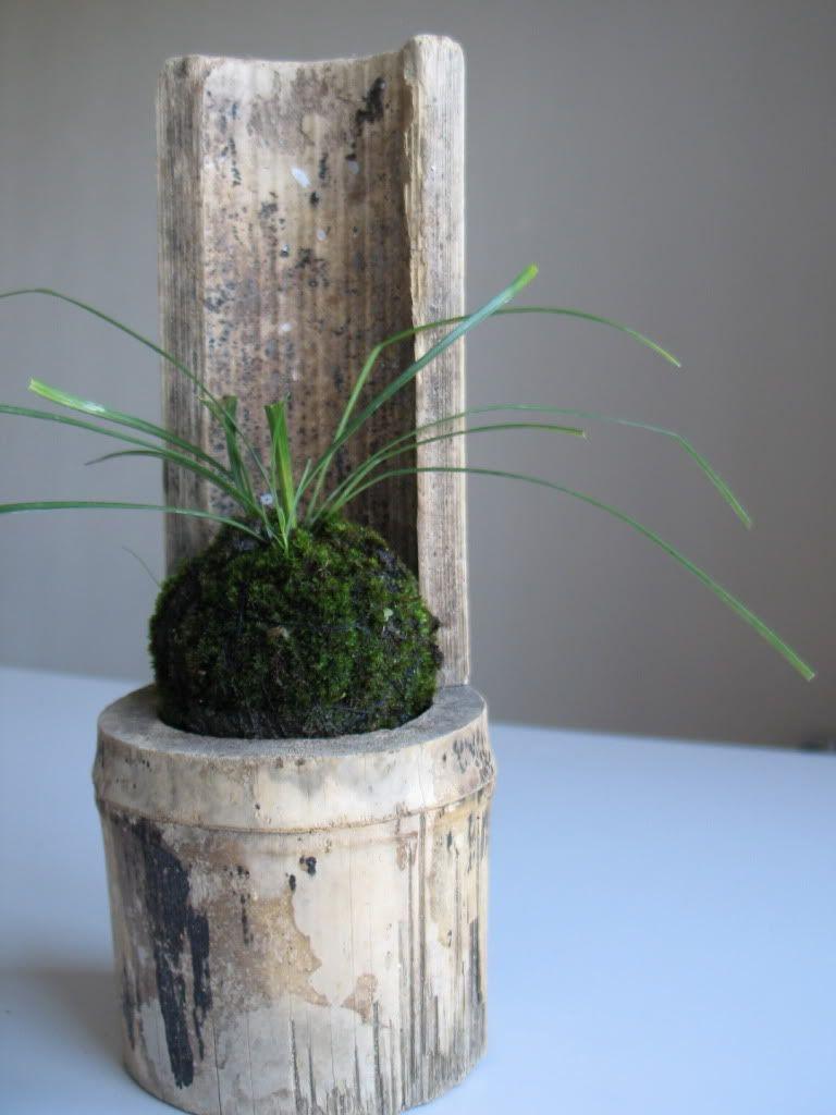 emmymade au japon comment faire kokedama d co plantes pinterest art floral japonais. Black Bedroom Furniture Sets. Home Design Ideas