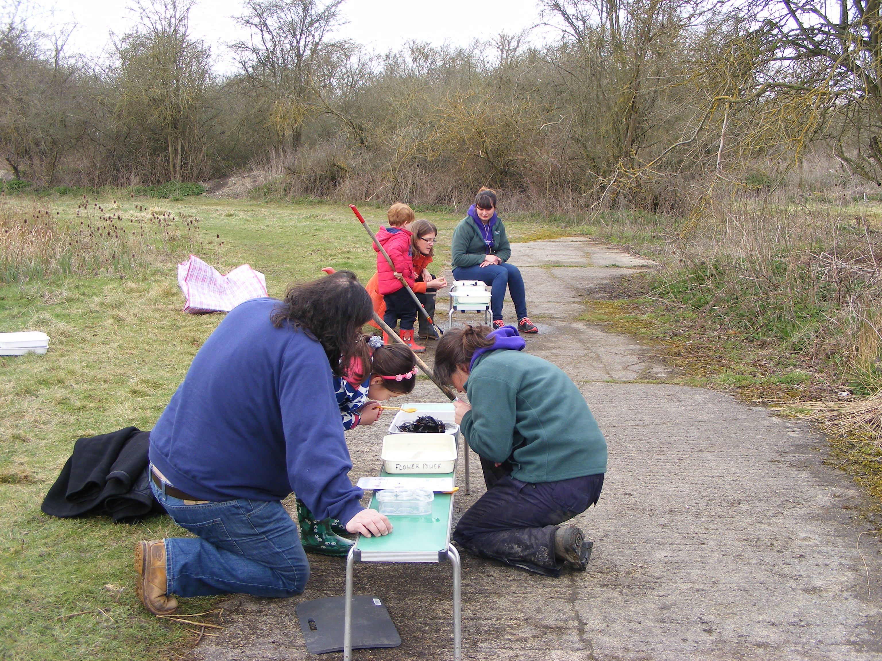 Identifying Our Finds With Images