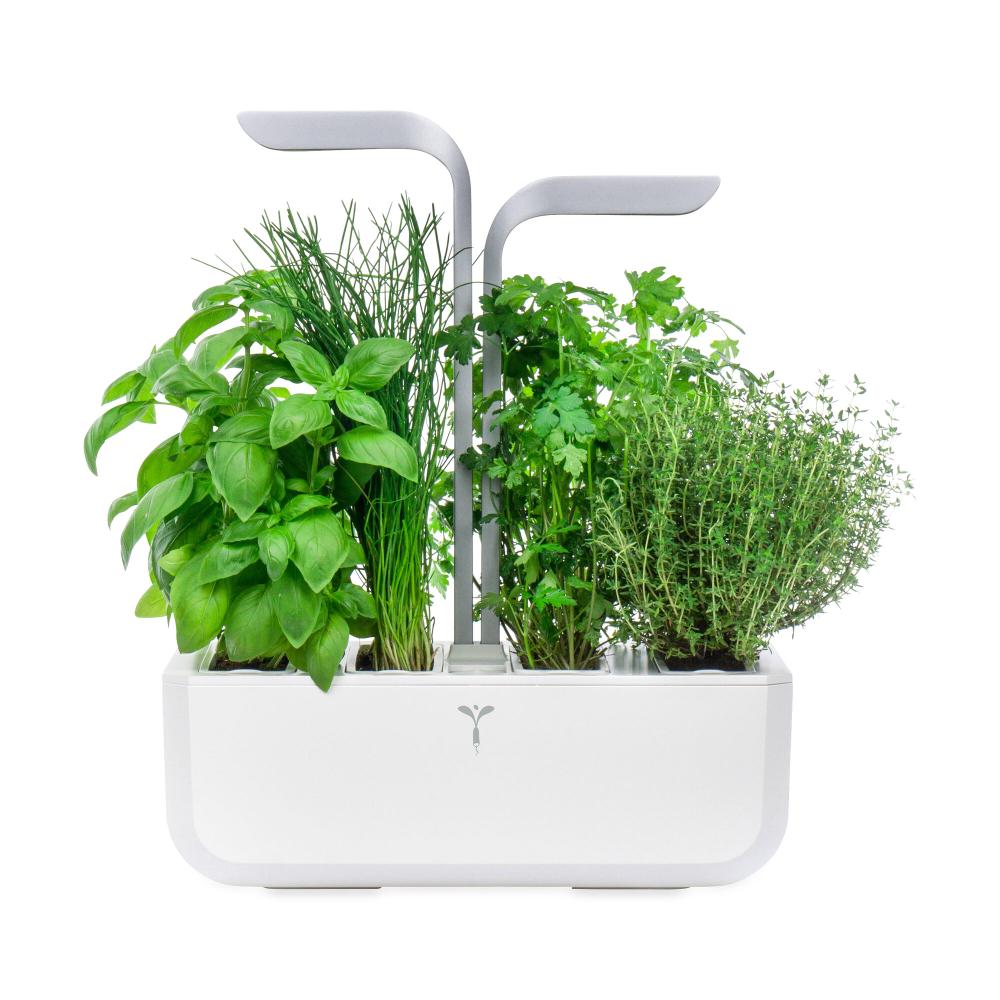 Veritable Smart Indoor Garden Herbs Indoor Garden Hydroponics Diy