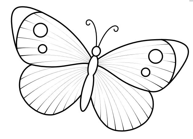 Kelebek Kaliplari Boyama Kelebekler Boyama Sayfalari Kendin