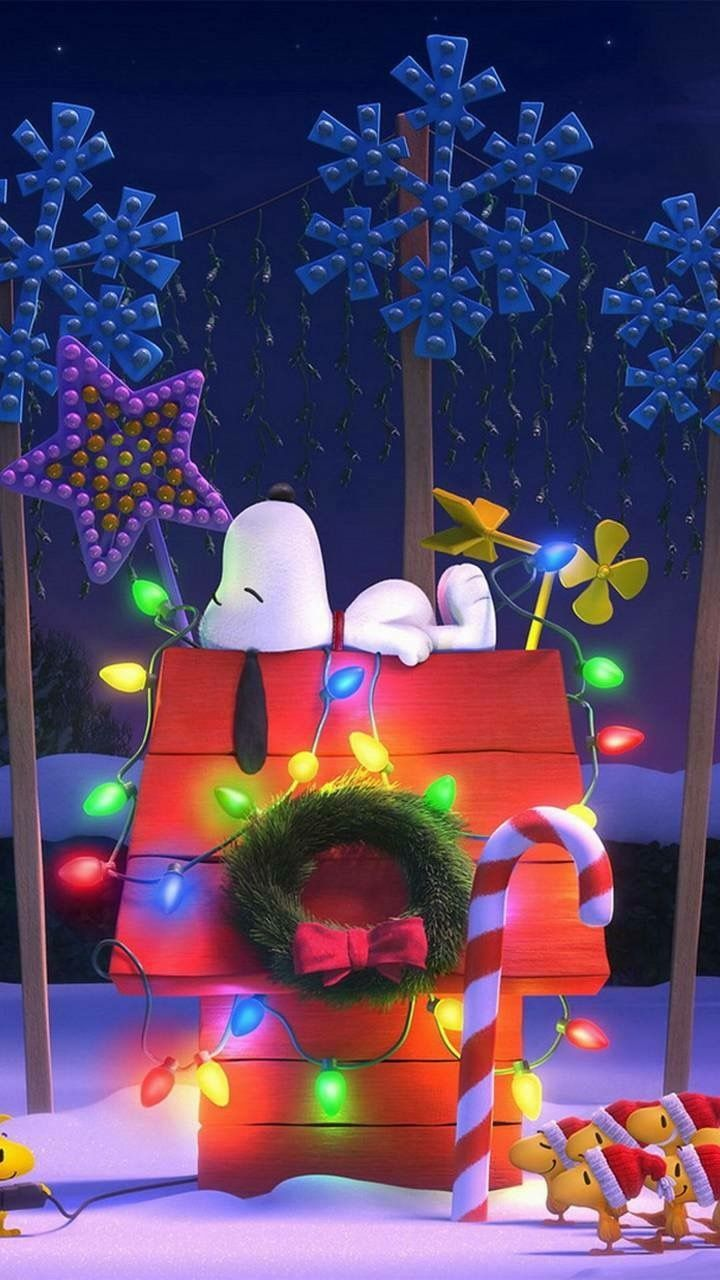 Snoopy | Christmas | Pinterest | Snoopy, Charlie brown and Christmas ...