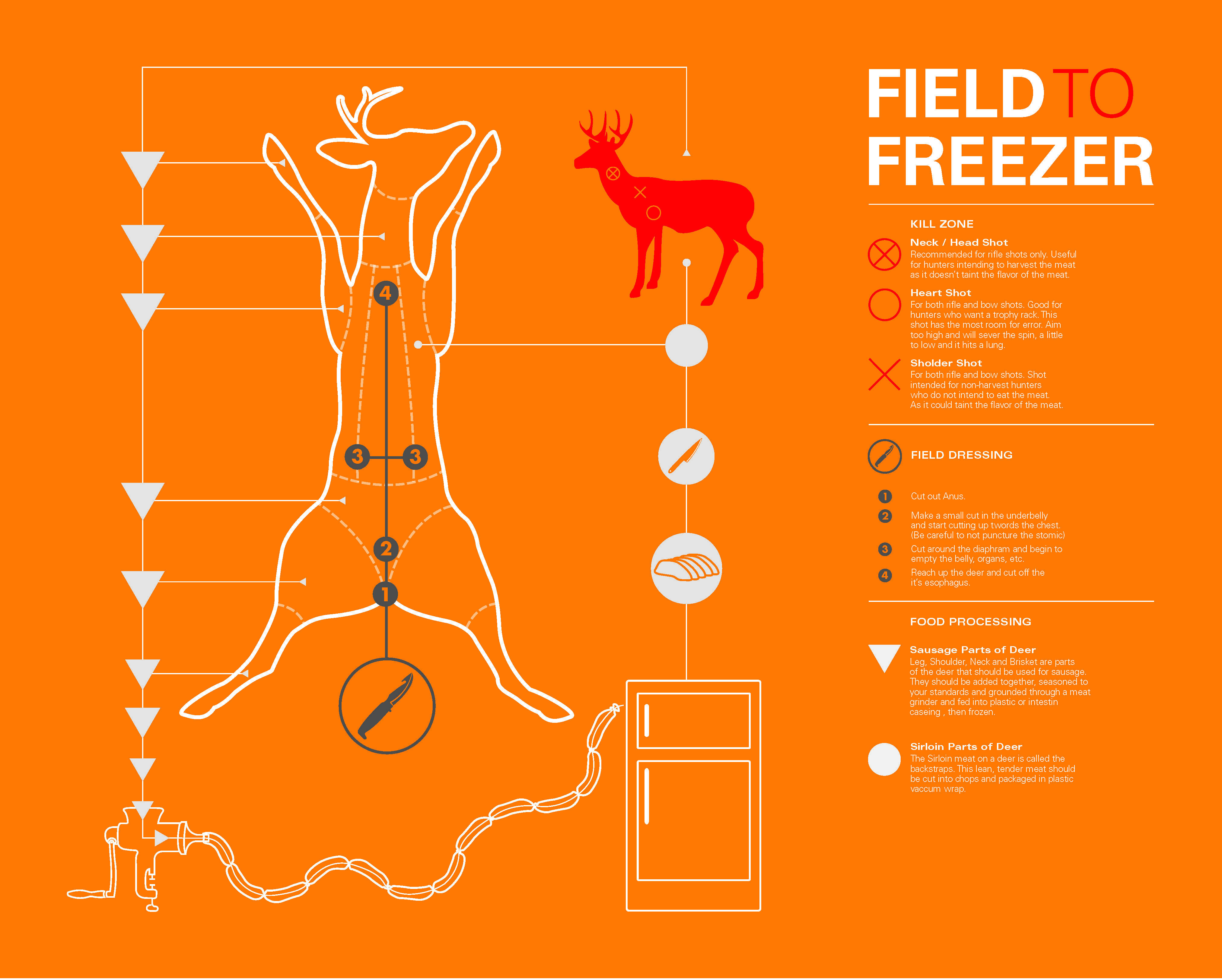 how to field dress a deer | it's important to know how to field dress your game animal properly.