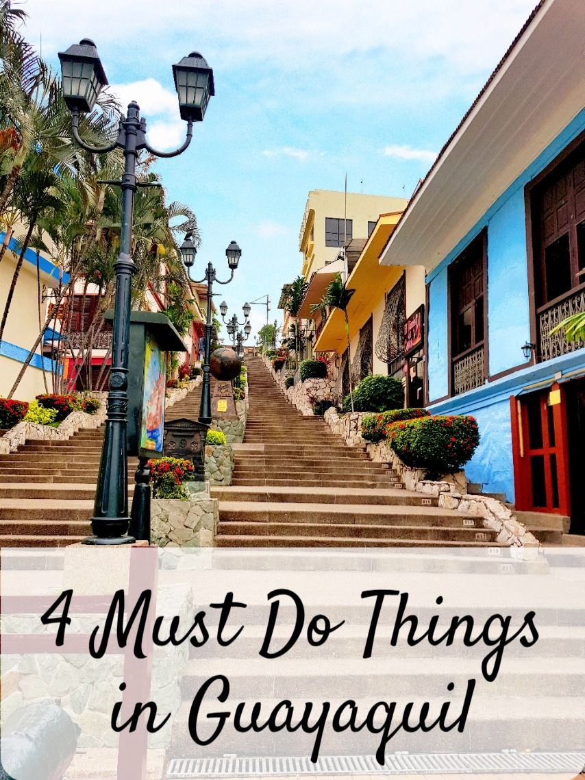 Gateway to the Galapagos Islands..... If you have to come here anyway, why not turn this into a sightseeing stop? Click here to read 4 must do things in Guayaquil and some travel tips.