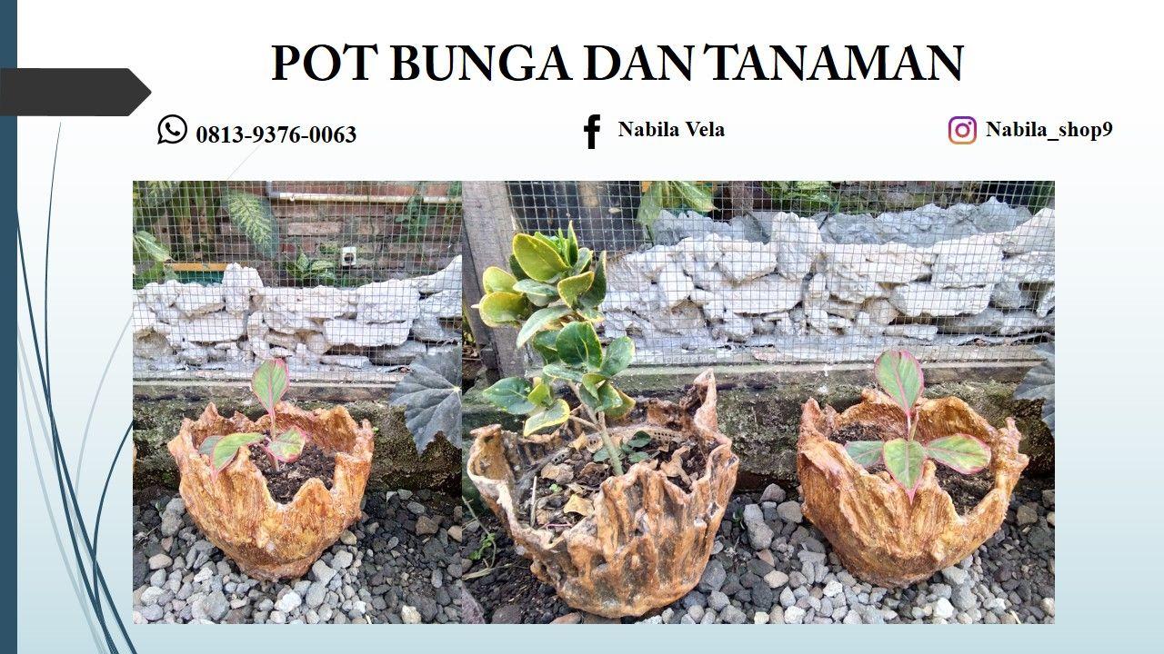 0813 9376 0063 Wa Vas Bunga Jepara Vas Bunga Jogja Vas Bunga