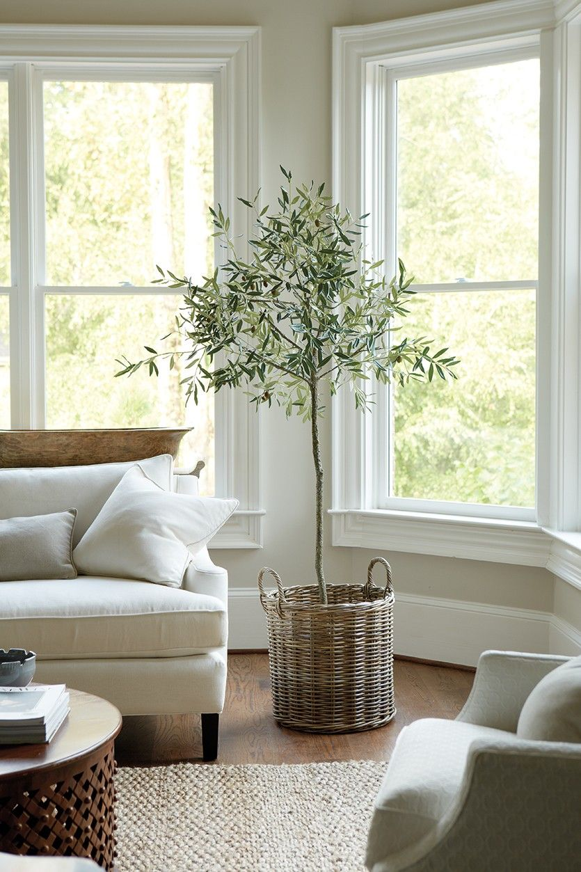 Decorating With Neutrals Washed Color Palettes How To Decorate Farm House Living Room Natural Home Decor Indoor Olive Tree #olive #color #living #room