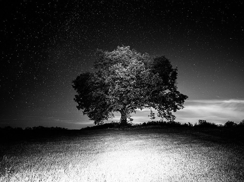 On a clear night in Pavullo nel Frignano, Italy, a lone tree presides over a small hill in this National Geographic Photo of the Day.