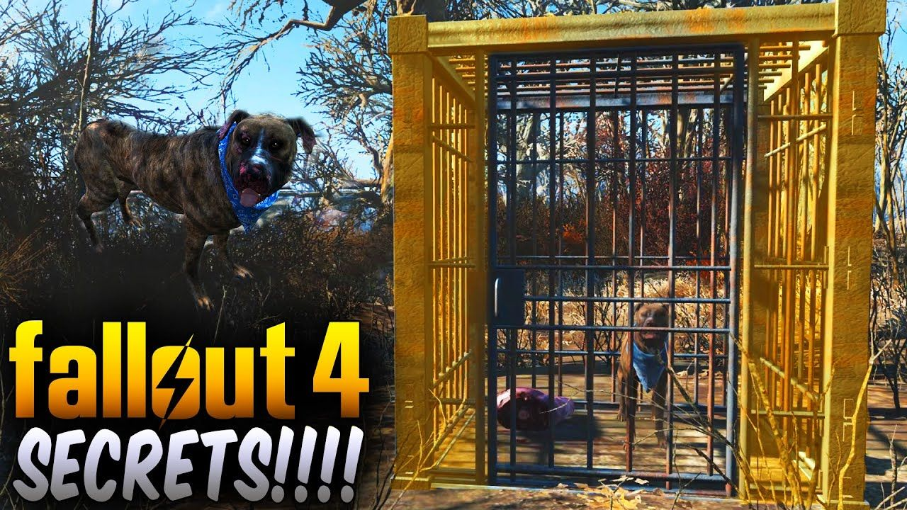 Fallout 4 Secrets Secret Caged Dog That Leads You To A Secret Trader Fallout 4 Secrets Fallout Fallout Cosplay