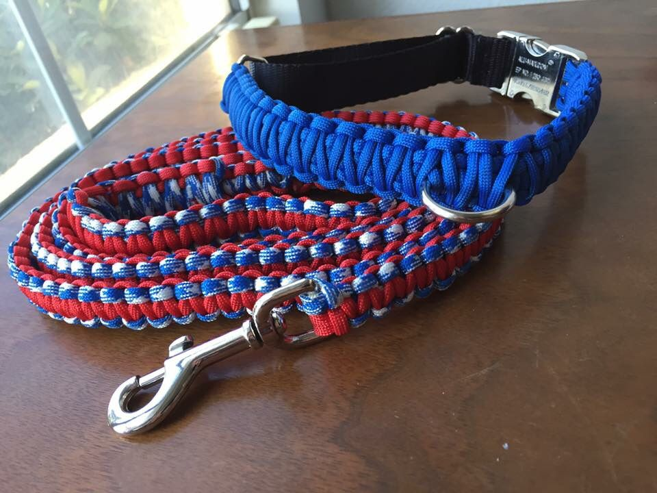 Blue collar with red white and blue leash