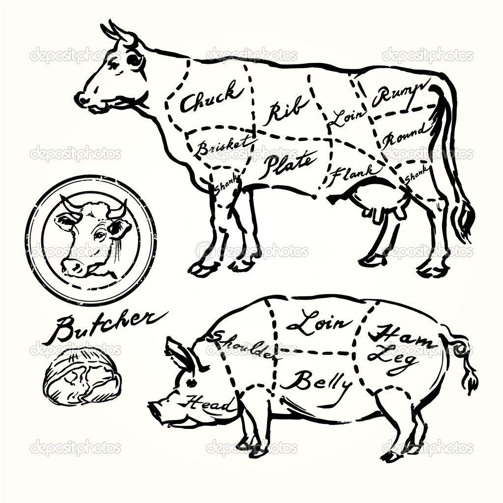 Vintage Pig Illustration