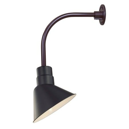Millennium Lighting RAS10-RGN12 #wideangle