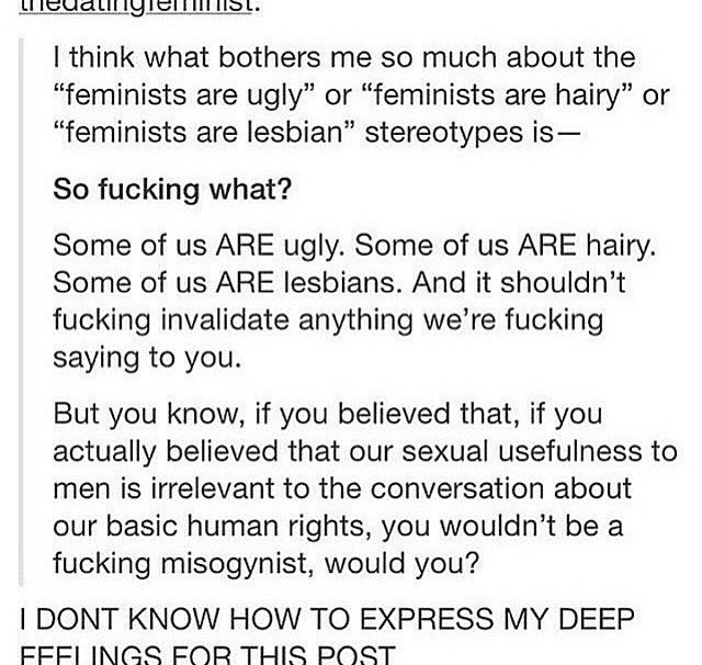 Ugly, hairy lesbians