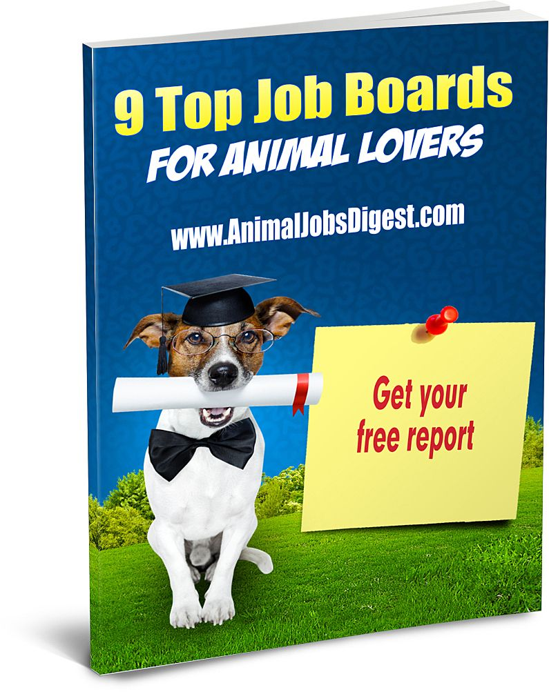 9 Top Job Boards For Animal Lovers Ebook Free For Subscribers Dog Walking Business Job Board Job