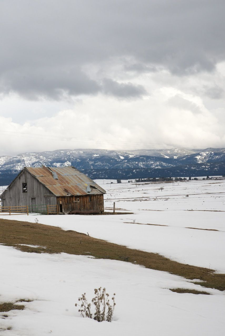 Gray barn on a snowy hill. Learn more about printing your high quality photography at http://prolabdigital.com !