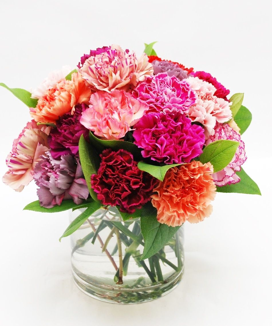 Two Dozen Mixed Color Carnations Arranged In A Vase A Colorful Confection Everyone Is Sure To Love Add B Carnation Centerpieces Carnation Flower Carnations