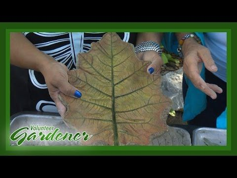 How To Make Cement Leaves Fox Den Rd Concrete Leaves Cement Leaves Garden Projects