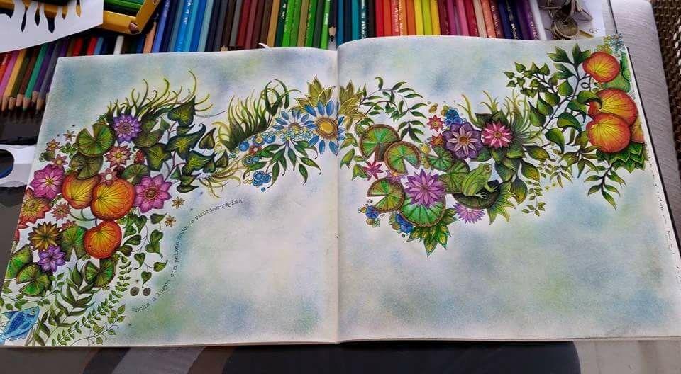 Flowers With A Frog Secret Garden Flores Com Sapo Jardim Secreto Johanna Secret Garden Coloring Book Johanna Basford Coloring Book Johanna Basford Coloring