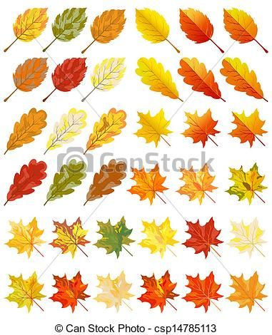 Pics For Autumn Leaves Drawings