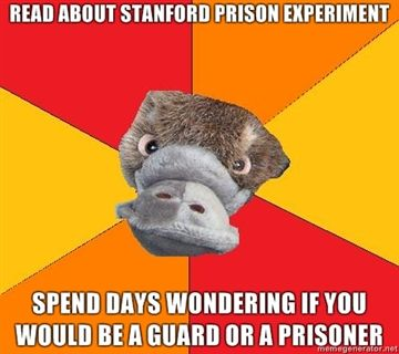 Fuck Yeah Psychology Student Platypus
