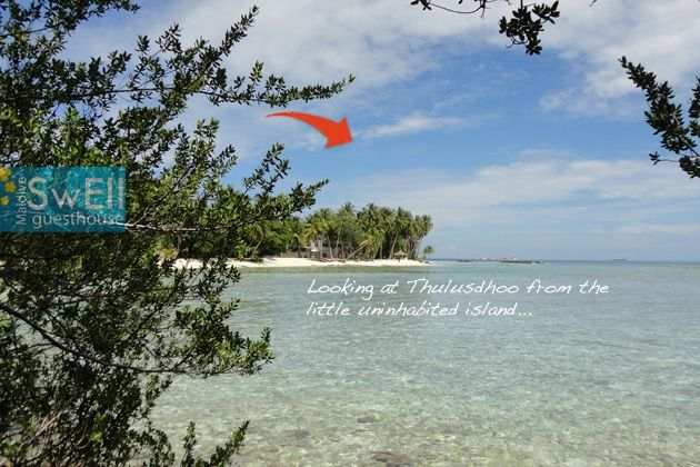 Maldive in the native island of Thulusdhoo in North Male' Atoll