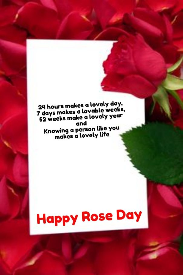 Cute Roses Wallpapers With Wordings Rose Poem Happy Rose Day Pictures Quotes Amp Poems Rose
