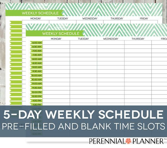 Daily Schedule Printable, Editable Times, Half-Hourly Weekly Weekday - excel spreadsheet template scheduling