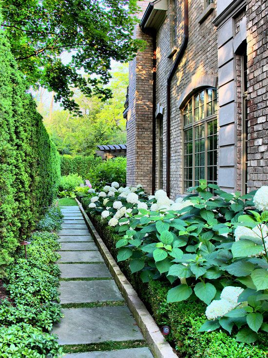 Elegant Alley Landscape Ideas, Designs, Remodels U0026 Photos