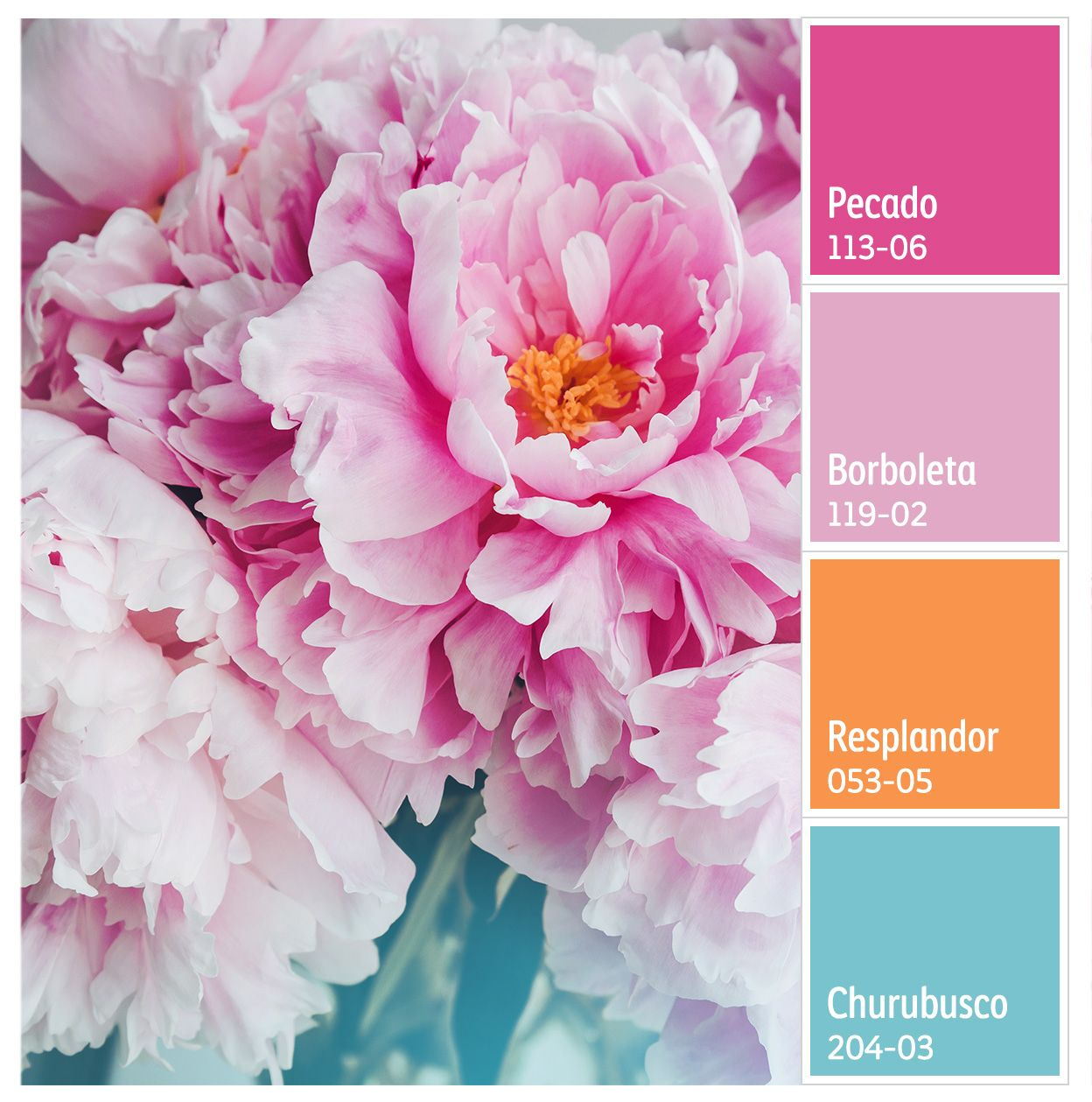 Admira los colores de la naturaleza. | Diseño | Pinterest | Color ...