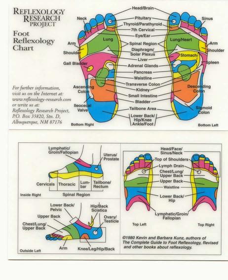 Reflexology Foot Chart, Foot