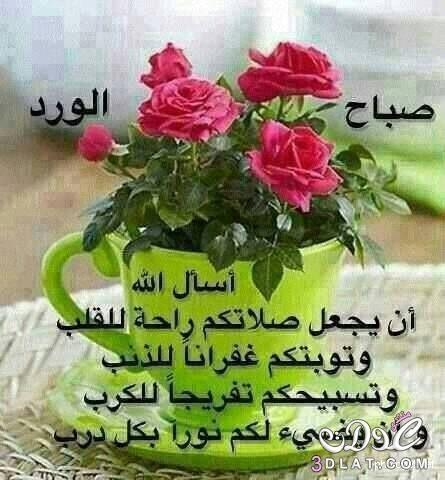 Pin By Wesan Abdulameer On مساء الخير Good Morning Arabic Herbs Plants