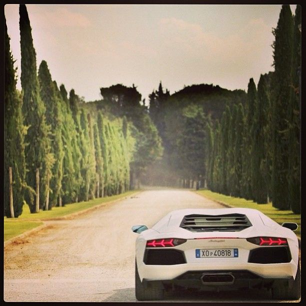 I M Bored Ready Set Go Aventador With Images Super Cars Fast Cars Amazing Cars